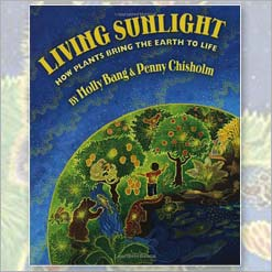 <center>LIVING SUNLIGHT<h4>HOW PLANTS BRING THE EARTH TO LIFE</h4><h4>– Book by Molly Bang and Penny Chisholm –</h4></center>