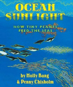 OCEAN SUNLIGHT: HOW TINY PLANTS FEED THE SEAS - Book by Molly Bang and Penny Chisholm -