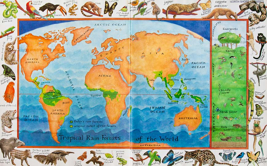 World Map of Jungles - The Great Kapok Tree - Amazon Rainforest story by Lynne Cherry.