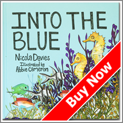 Buy-now-Into-the-Blue-kids book